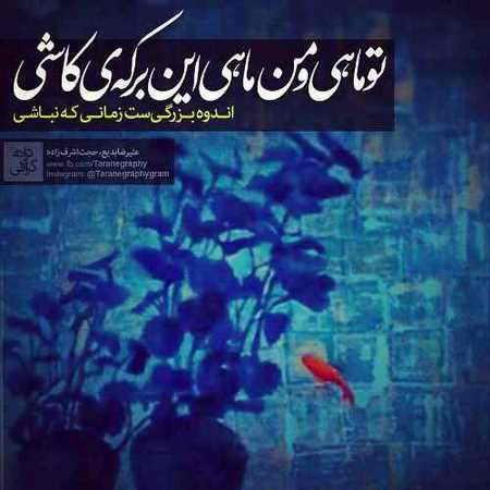 Hojat Ashrafzadeh Mah Mahie دانلود آهنگ حجت اشرف زاده ماه و ماهی