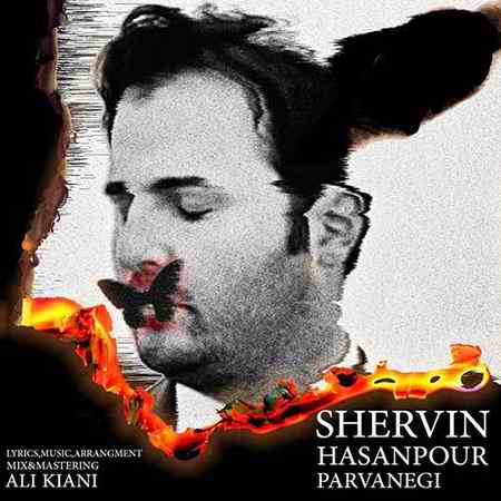 Shervin Parvanegi دانلود آهنگ شروین پروانگی