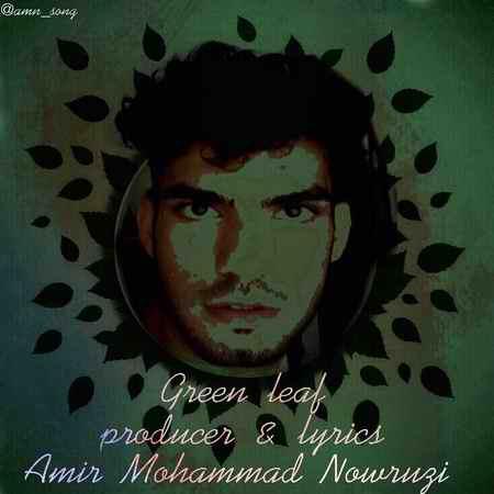photo ۲۰۲۰ ۰۶ ۳۰ ۰۱ ۲۵ ۵۲ دانلود آهنگ امیر محمد نوروزی برگ سبز