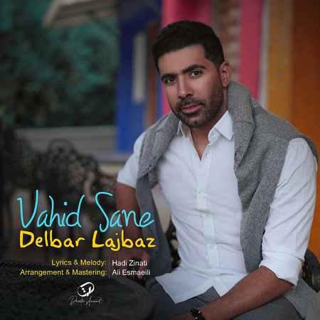 Vahid Sane Delbare Lajbaz Cover Music fa.com  دانلود آهنگ وحید صانع دلبر لجباز