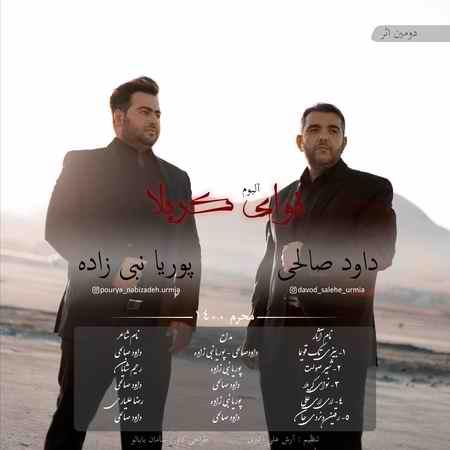Cover 2 دانلود آلبوم داود صالحی و پوریا نبی زاده نوای کربلا